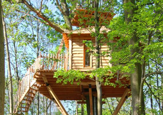 dormir dans une cabane dans les arbres chez La cabane des grands chênes